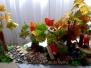 Zajęcia plastyczne - jesienny las